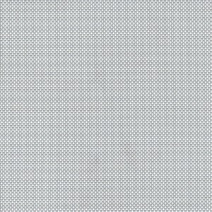 Monza: 03 - Gris/blanc